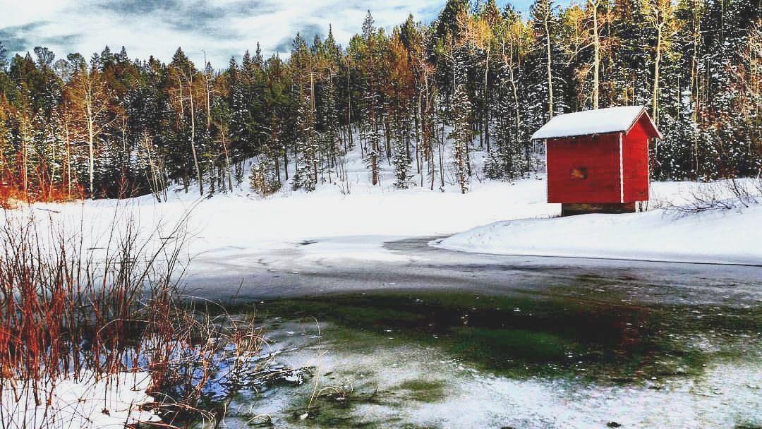Harmonizing With the Winter Season