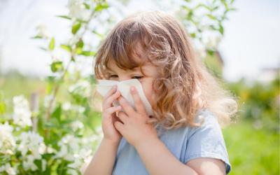 Healing Allergies Naturally