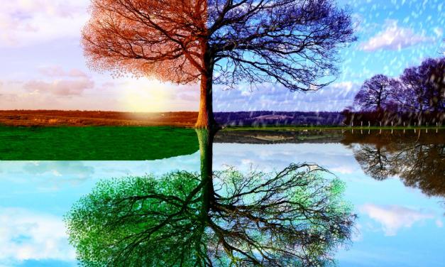 Preserve Good Health through Seasonal Transitions