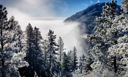Acclimating to Winter in Mind and Body